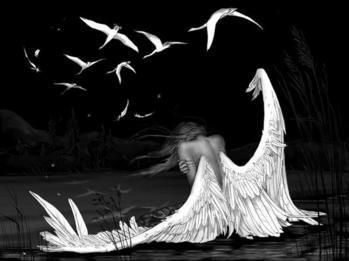 9481950_odinokiy_angel (349x261, 15Kb)
