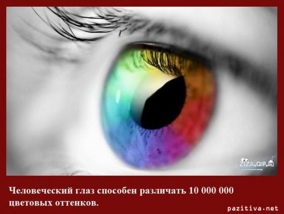 4034513_6782425015978331 (560x423, 74Kb)