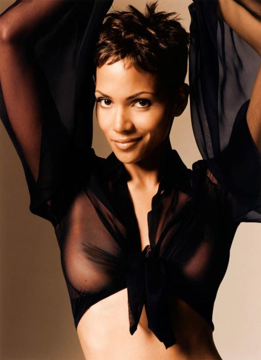 Halle Berry (13) (508x700, 50Kb)