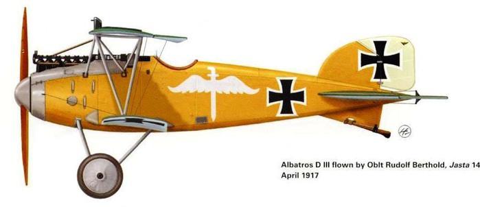 05 Albatros бертольда (700x302, 38Kb)