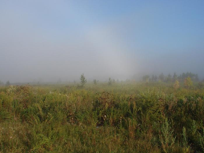 Уходящий туман/1313761787_5 (700x525, 124Kb)