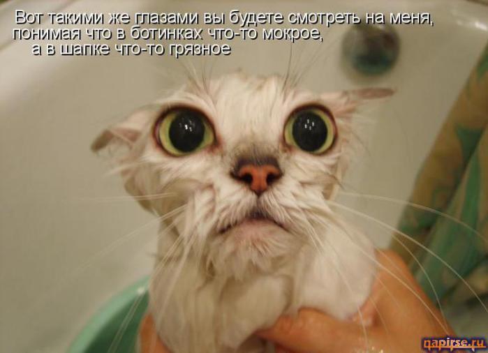 http://img0.liveinternet.ru/images/attach/c/3/77/277/77277108_4059800_2512279610093461.jpg