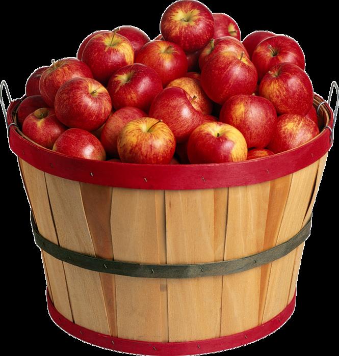 яблоки 1 (665x700, 705Kb)