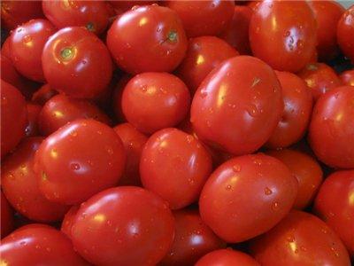 pomidor (400x300, 21Kb)