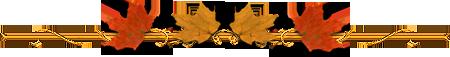 74354045_181beec400bd (450x57, 31Kb)