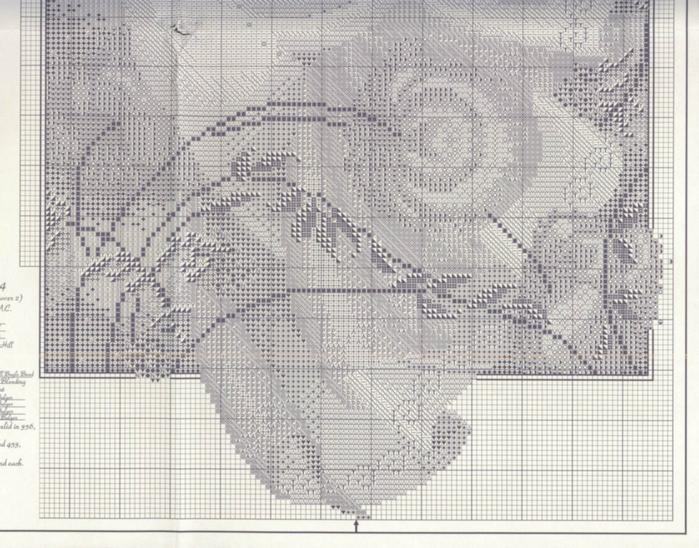 MD7 Fairy Flora_chart4 (700x548, 460Kb)