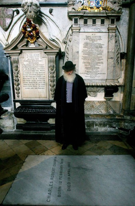Вестминстерское Аббатство (Westminster Abbey) 50155