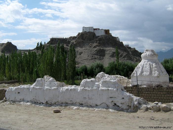 Индия, Ладакх, Лех, монастырь Thiksay, 1 (700x525, 238Kb)