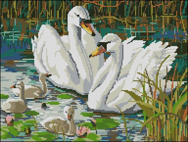 quot;Лебеди на Яндекс.Фотках.