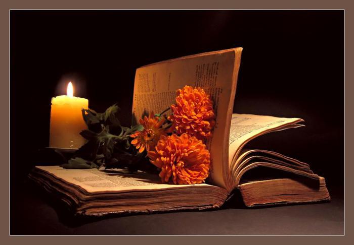 book_1767 (700x486, 34Kb)