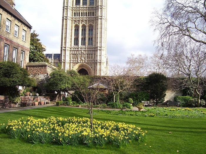 Вестминстерское Аббатство (Westminster Abbey) 14362