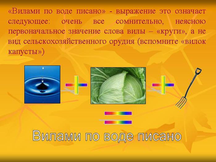 0003-003-Vilami-po-vode-pisano-vyrazhenie-eto-oznachaet-sledujuschee-ochen-vse (700x525, 52Kb)