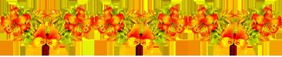 0_4ce06_4fed4fb9_XL (400x81, 59Kb)