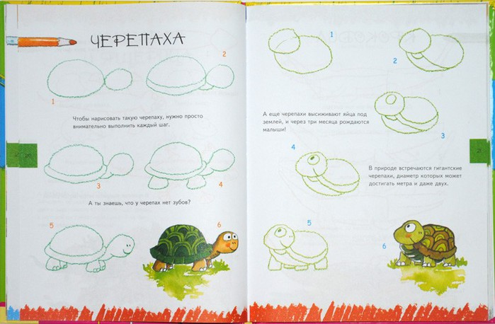 Эта фотография вы найдете в архивах ...: tatu-msk.ru/uroki-risovaniya-karandashom-mishki-teddi.html