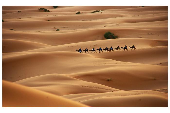 Пустыня бесконечности. 77554450_large_1328996