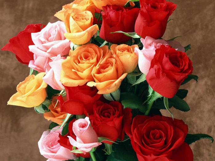 розы для вас (700x525, 136Kb)
