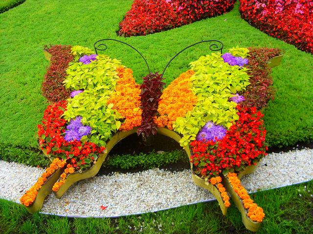 Фигуры из цветов фото