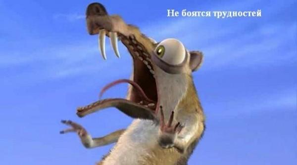 1314694646_belka_v_shoke (600x334, 28Kb)