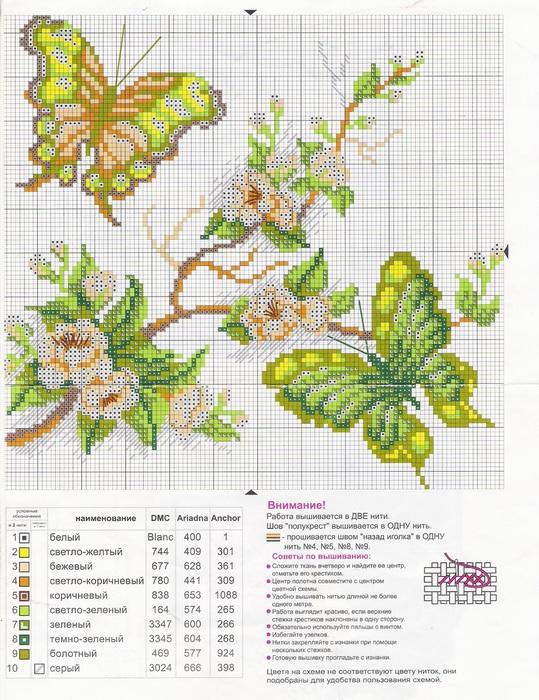 бабочки (539x700, 182Kb)
