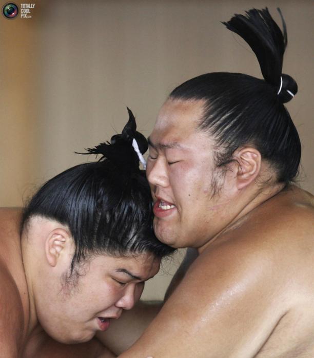 sumo_002 (612x700, 414Kb)