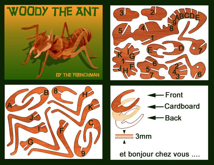 AntDoc (700x539, 167Kb)