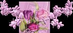 57802102_57548842_tulipbar3 (146x67, 20Kb)