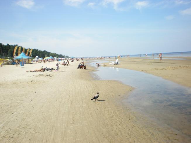 При шторме не уносило песок в море