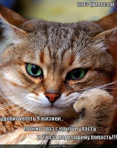 3507063_9zhizney_1277889145 (395x500, 89Kb)