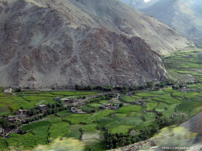 Индия, Ладакх, окрестности Леха, дорога к озеру Pangong (0) (700x525, 304Kb)