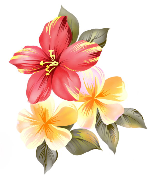 krasivye-cvety-clipart (622x700, 333Kb)