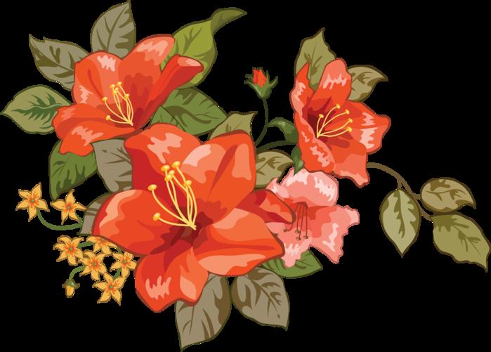milye-cvety (700x501, 234Kb)