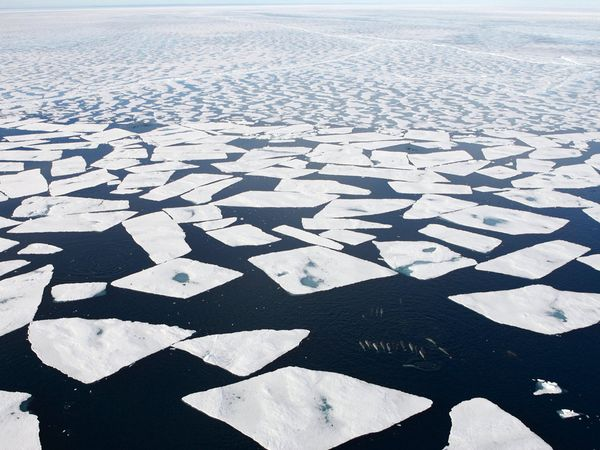 лед (600x450, 58Kb)