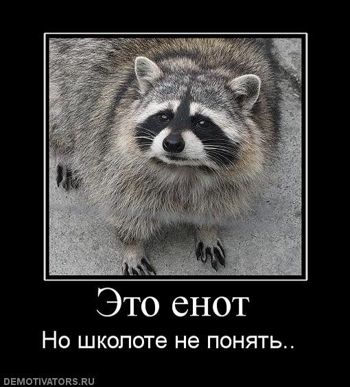 342514_eto-enot (510x564, 58Kb)