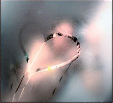 cuoresuvetroappannato2 (446x407, 16Kb)