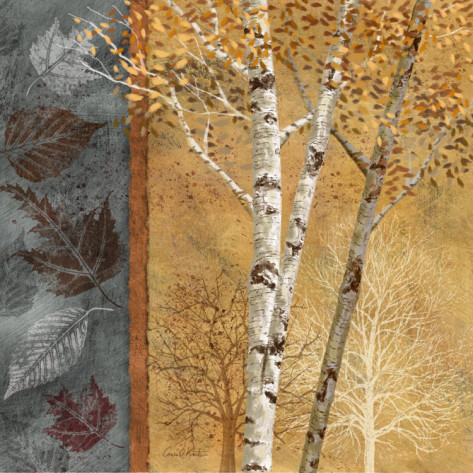 conrad-knutsen-birch-tree-in-autumn-i (473x473, 109Kb)