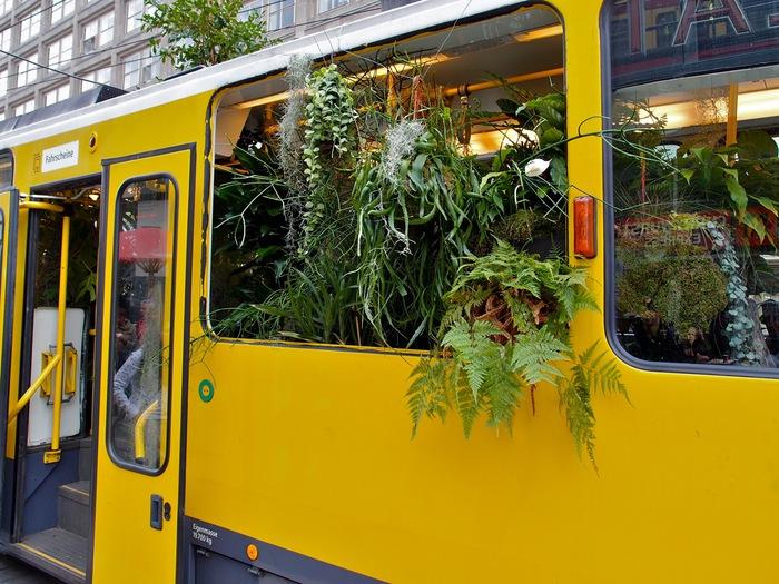 Трамвай-джунгли в Берлине