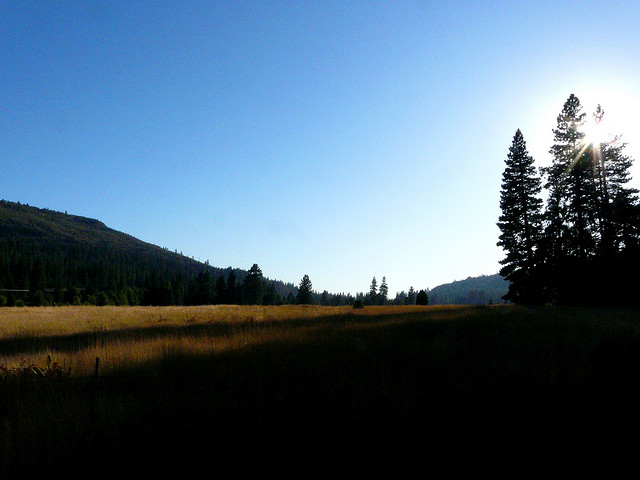 3676705_meadows36 (640x480, 86Kb)
