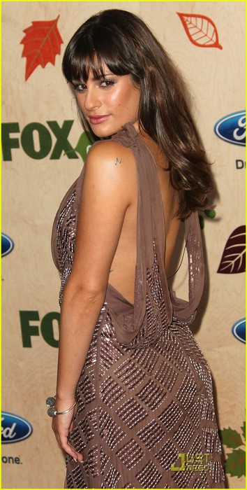 lea-michele-fox-fall-eco-casino-party-05 (354x700, 83Kb)
