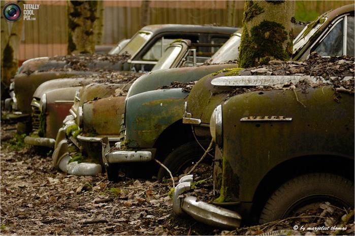 cars_021 (700x466, 185Kb)