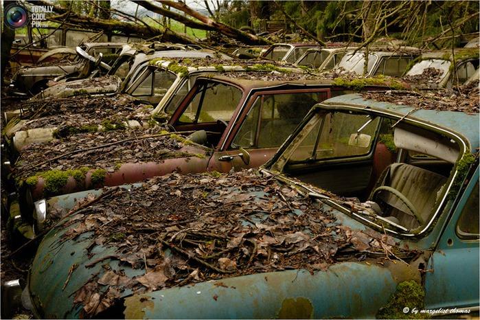 cars_010 (700x466, 168Kb)