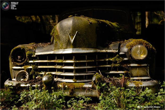 cars_018 (700x466, 121Kb)