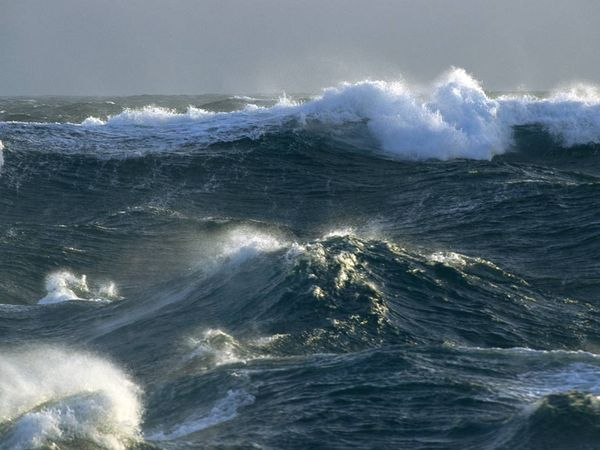 океан3 (600x450, 45Kb)