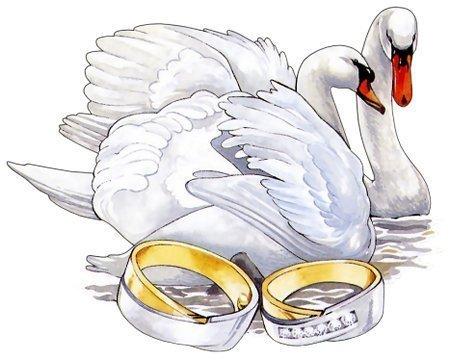 свадьба (450x361, 34Kb)
