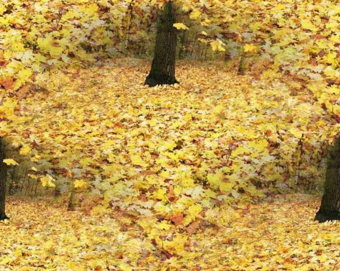 Картинки бесшовные фоны на тему осень