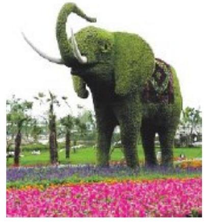 живая скульптура (353x325,5, 52Kb)