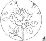 Превью gatopreto[1].com.br_florais_04_b.gif (700x623, 160Kb)