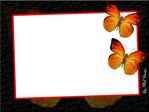 Превью borboletas.psd (640x480, 63Kb)