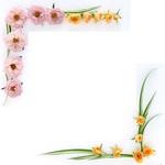 Превью Flower15 (512x512, 27Kb)