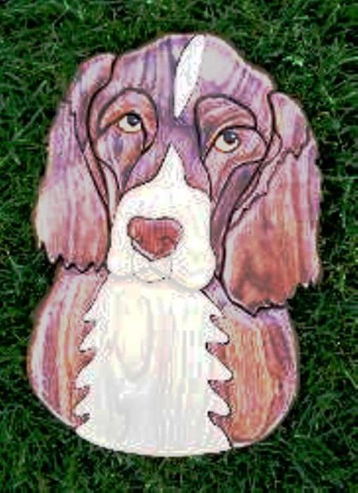 English~Springer~Spaniel (509x700, 58Kb)