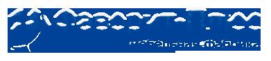 logo_08_snow (391x89, 22Kb)